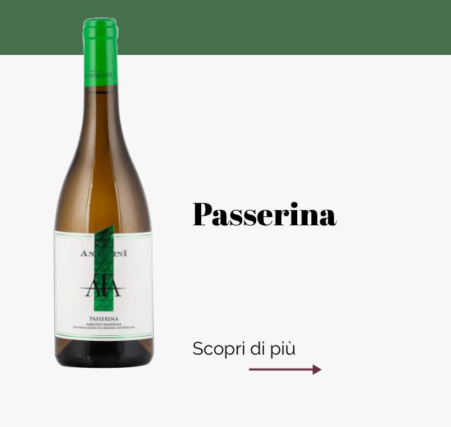 Cantina_Passerina