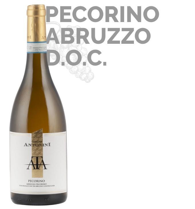 Homepage_Pecorino