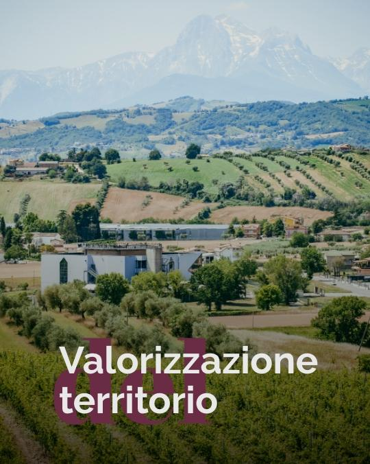 Tenuta_Antonini_Valore_01